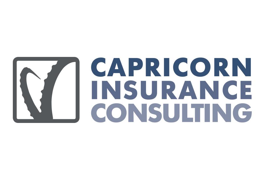 Logoentwicklung für ein Consulting-Unternehmen